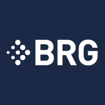 Logo for Berkeley Research Group