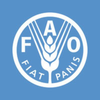 Logo for FAO
