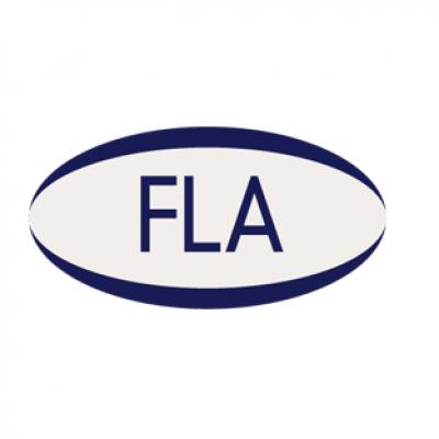 Logo for Finance & Leasing Association