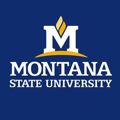 Logo for Montana State University
